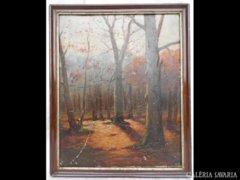 Y718 R1 Régi olaj karton festmény erdőbelső