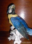 ENS, Porcelán Papagáj