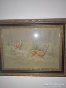 Valaczkai kép őzek