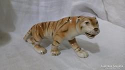 Royal Dux tigris