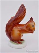 Hollóházi mogyorót evő mókus