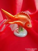 Drasche porcelán hal