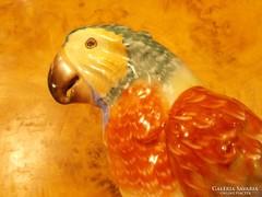 25 cm-es Herendi porcelán papagáj. Különleges darab!