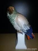 Rosenthal papagáj