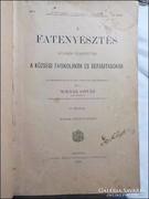 Molnár István : A fatenyésztés 1898