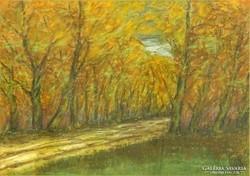 0L945 Halász J. jelzéssel : Őszi erdő