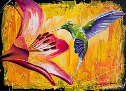 Kolibri Festmény 70x50