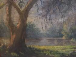 Tóth János korai őszi áradás festmény 31X38 cm